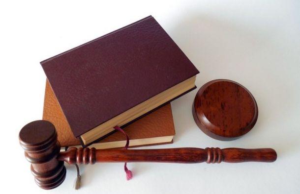 Обвиняемых визнасиловании иубийстве могут посадить на8 и18 лет