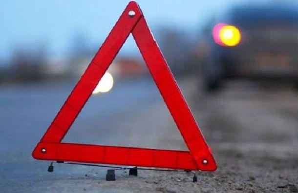 Семь человек пострадали вДТП смаршруткой наПулковском шоссе