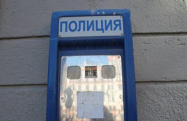 Два сетевых магазина ограбили наюго-западе Петербурга