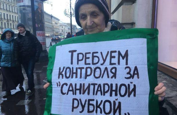 Экоактивисты провели 40 пикетов наНевском проспекте заканикулы