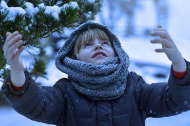 Петербург всреду ожидает рекордно теплая погода