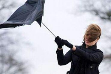 ВПетербурге всреду ожидается шквальный ветер
