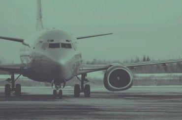 Причиной крушения Boeing под Тегераном назвали возгорание двигателя