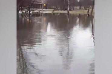 Озеро изфекалий: вСестрорецке прорвало канализацию