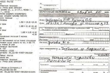 Челябинец перевел Путину 28 рублей иназвал это «публичной взяткой»