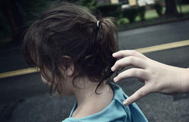 Мужчина вкамуфляже пытался похитить девочку вНовой Ладоге