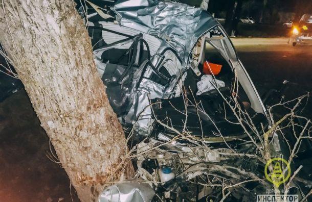 Трое мужчин погибли ваварии вВолосовском районе