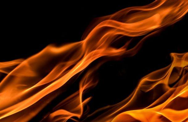 Двух человек спасли изгорящего дома вЛуге