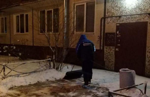 Центральный иНевский районы назвали худшими поуборке снега