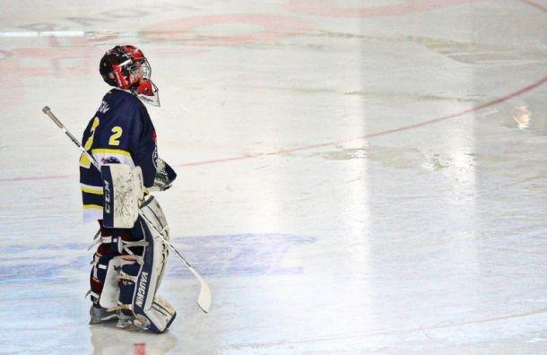 Юные хоккеисты устроили массовую драку натурнире вТольятти