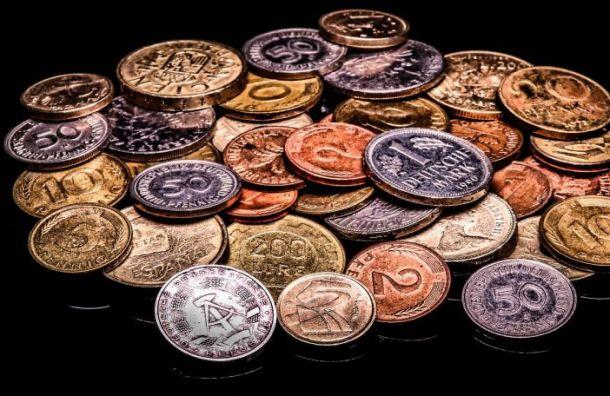 Злоумышленник украл альбом сколлекционными монетами исеребряный рубль