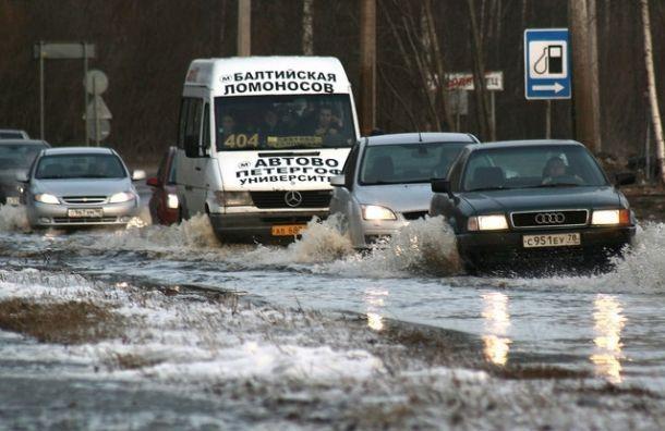 Сильных весенних паводков вПетербурге неожидается
