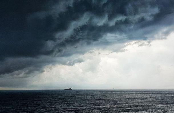 Петербургские моряки отравились химикатами отгрызунов