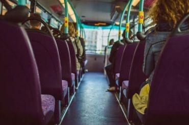 Петербуржцы оказались вавтобусе, накотором был больной коронавирусом