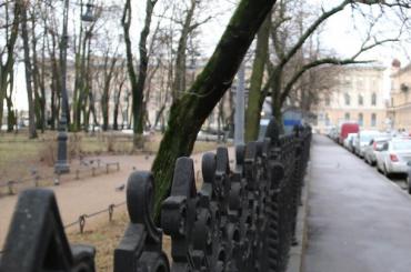 Парки исады Петербурга закрыли из-за непогоды