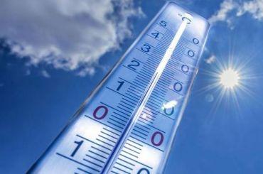 Петербург вДень сурка установил температурный рекорд