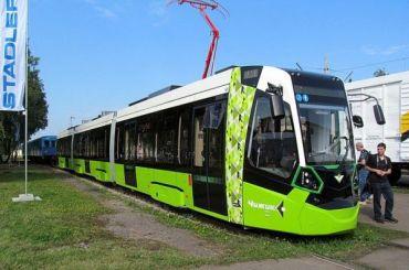 Трамвай из Купчино в Славянку обзавелся именем