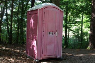 Смольный потратит 241 млн рублей нагородские туалеты