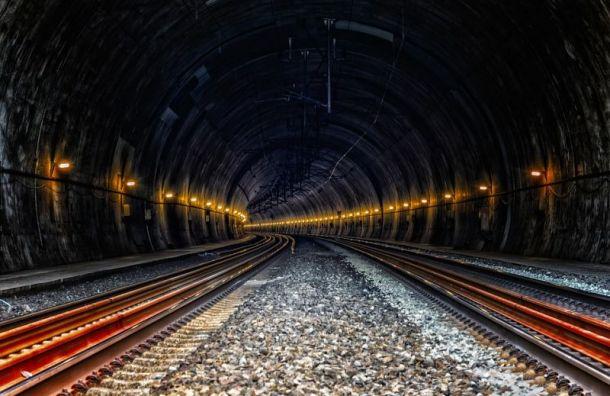 Накрасной ветке метро пассажир упал напуть