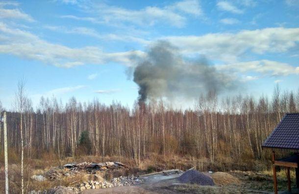Ангары загорелись вбизнес-парке «Мартышкино»