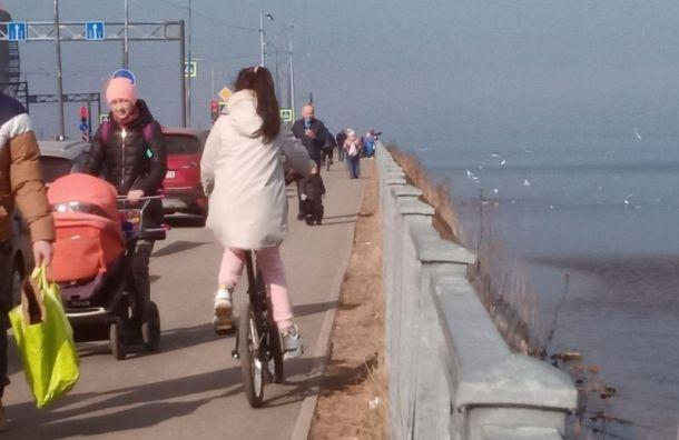 Спорт ишашлыки: жители юго-запада Петербурга наплевали накарантин
