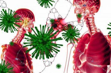 Ученые назвали скрытых переносчиков коронавируса