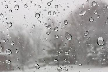 Петербург всреду ждут дожди игололедица