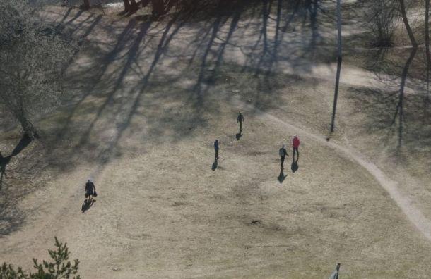 Вишневский предложил Беглову отменить запрет напосещение парков искверов
