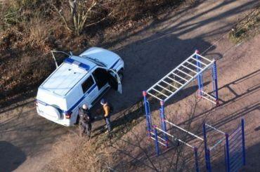 Двоих петербуржцев оштрафовали занахождение надетской площадке