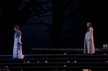 Трансляции Мариинского театра посмотрели почти девять миллионов зрителей