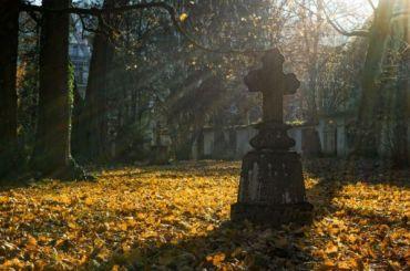 Злоумышленники пытались захватить кладбище вЛенинградской области