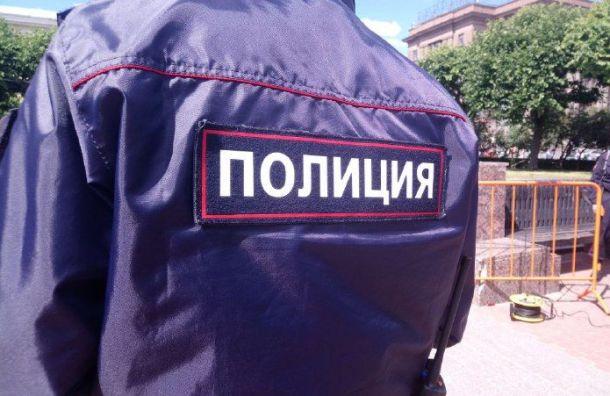 Полиция официально получила право штрафовать нарушителей самоизоляции в Петербурге