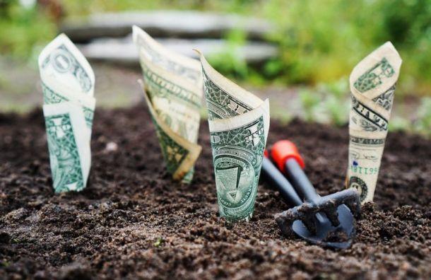 Доля должников вРоссии, отказывающихся платить покредитам, выросла до60%
