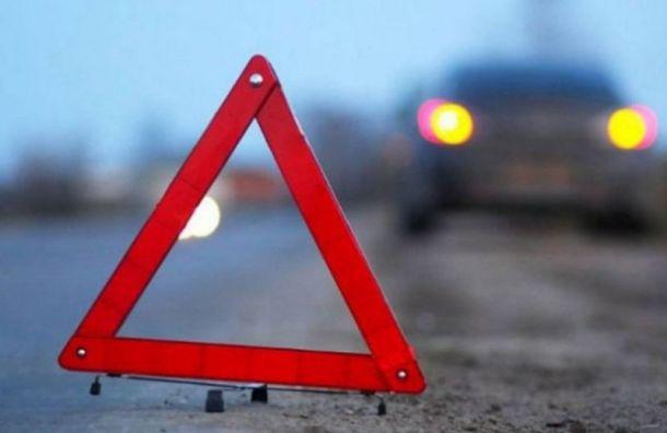 Водитель ипассажиры «Лады» погибли вДТП под Петербургом