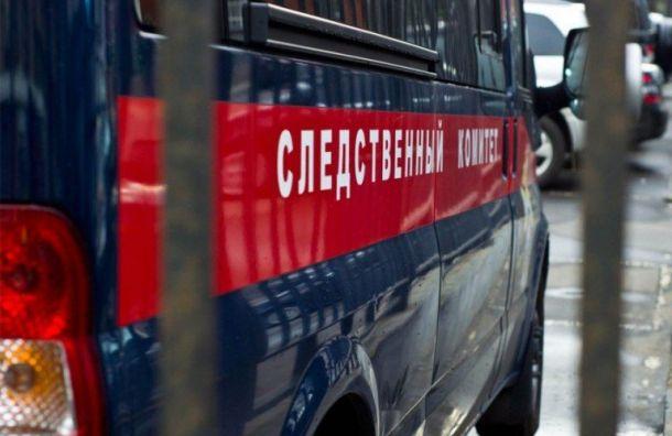 СКвозбудил дело пофакту уничтожения объектов культурного наследия вЛенобласти