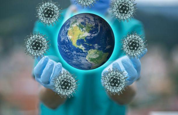 Специалисты СПбГУ разработали сборщик для расшифровки геномов вирусов