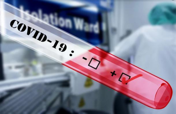 Коронавирус засутки выявили вПетербурге у541 человека