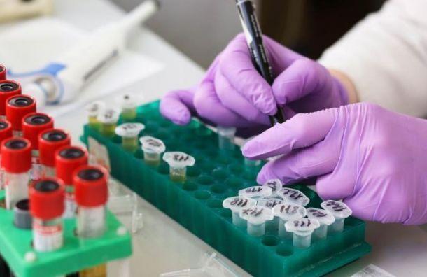 Засутки вПетербурге обследовали накоронавирус более 10 тысяч человек