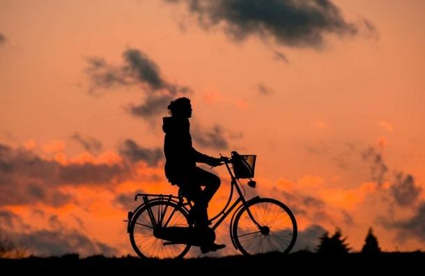 Петербуржцы предложили создать временные велодорожки навремя пандемии