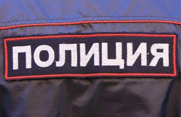 Полиция задержала организатора похищения 4 тысяч масок вПетербурге