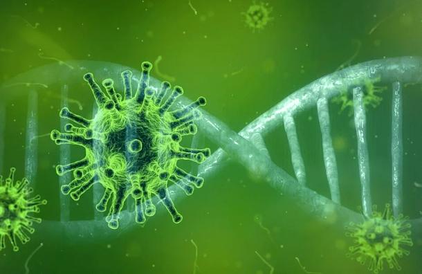 Ученые назвали новую причину высокой смертности откоронавируса