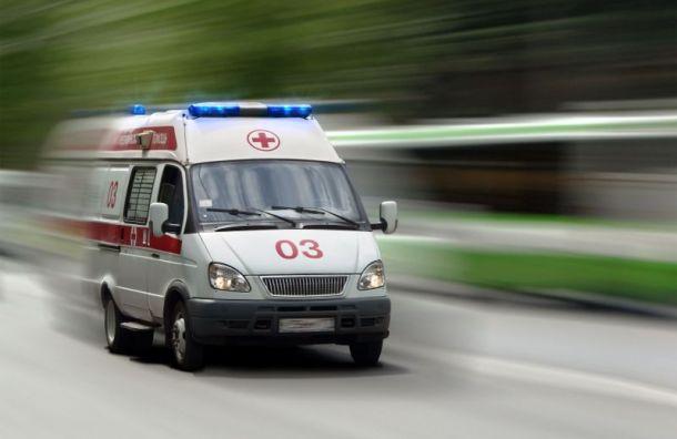Пожар наМаяковского: пострадала пенсионерка ипогибла собака