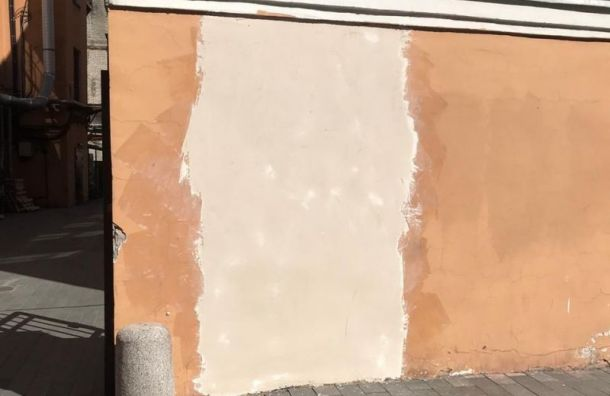 Фреску спортретом Бродского наПестеля оперативно замазали