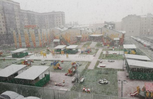 Утро началось вПетербурге сдождя иснега