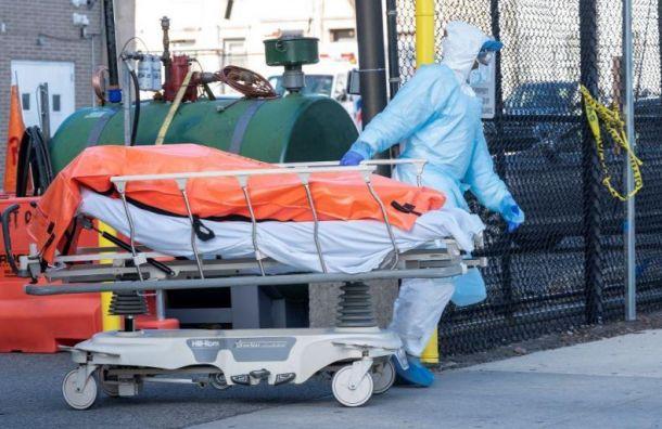 Засутки вПетербурге подтвердились 20 новых смертей откоронавируса