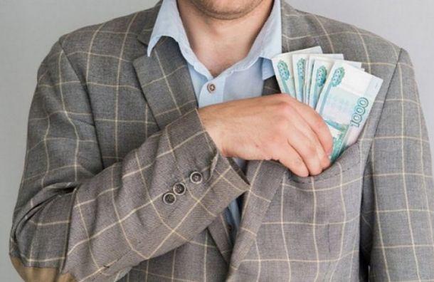 ВСовфеде хотят ввести уголовное наказание засерые зарплаты