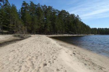 Экологи: Берега России иФинляндии нуждаются взащите