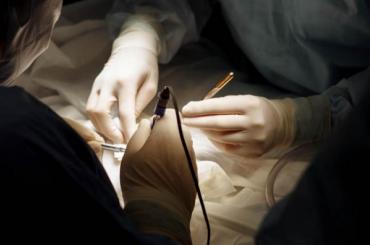 Нейрохирурги изПетербурга провели редчайшую операцию наголовном мозге ребенка