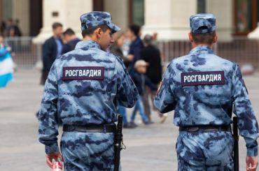 Полиция иРосгвардия будут проводить рейды вовремя майских праздников