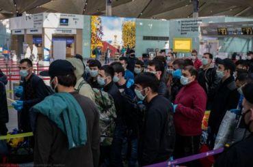 Как мигранты покидали Петербург